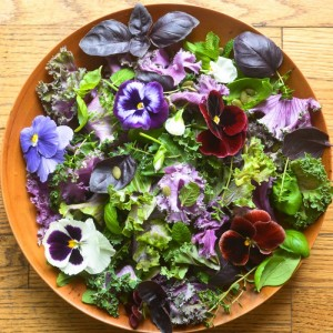 spring-kale-and-herb-salad-11